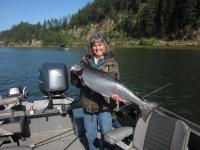 Ellen 20 lb salmon